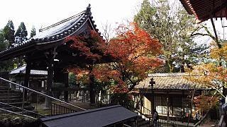 20151120永観堂(その36)