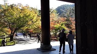 20151120南禅寺(その7)