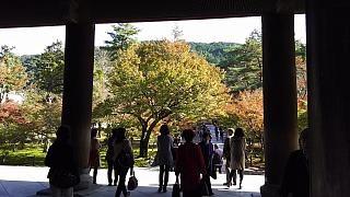 20151120南禅寺(その8)