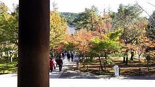 20151120南禅寺(その10)