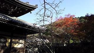 20151120南禅寺(その13)