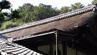 20151120南禅寺(その15)