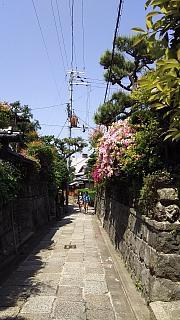 20160501石塀小路(その3)