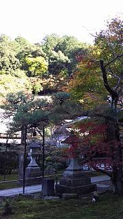20151120南禅寺(その19)