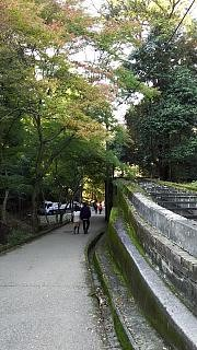 20151120南禅寺(その20)