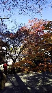 20151120南禅寺(その21)