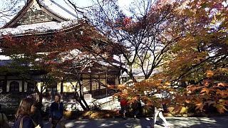 20151120南禅寺(その22)