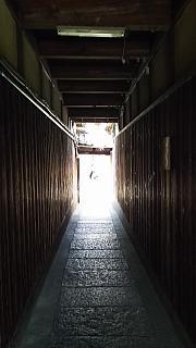 20160501石塀小路(その11)