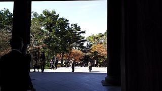 20151120南禅寺(その28)
