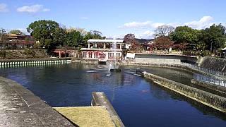 20151120南禅寺(その30)