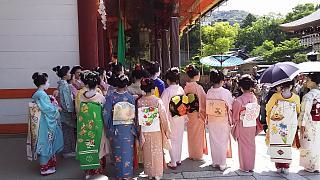 20160501八坂神社(その31)