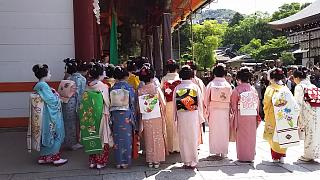 20160501八坂神社(その34)