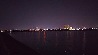 20151121夜の野田池(その2)