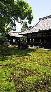 20160501青蓮院門跡(その43)