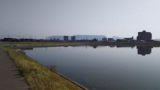 20160502野田池(その5)
