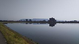 20160502野田池(その6)