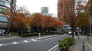 20151206武蔵小杉