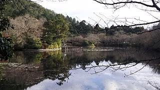 20151227龍安寺(その24)