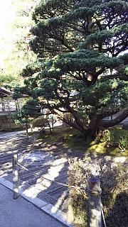 20151228銀閣寺(その4)