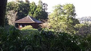 20151228銀閣寺(その29)