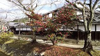 20151228銀閣寺(その43)