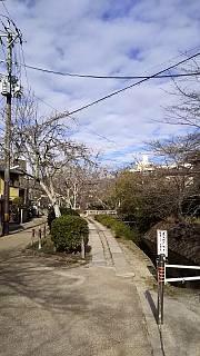 20151228銀閣寺(その44)