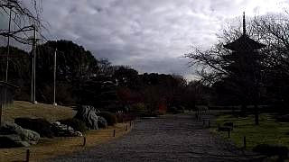 20151228東寺(その21)