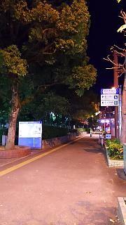 20151229フェリー通り