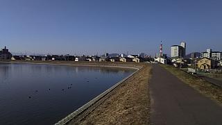 20160101朝の散歩(その43)