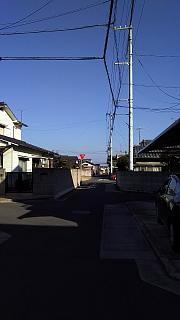 20160101朝の散歩(その48)