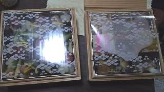 20160101二蝶(その5)