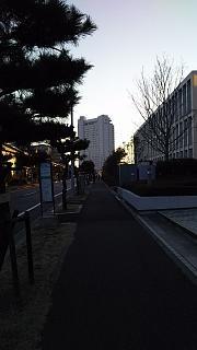 20160125新浦安(その2)