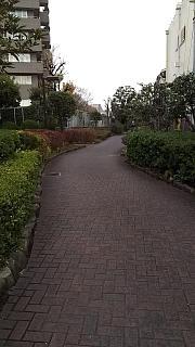 20160131さぬ散歩(その11)