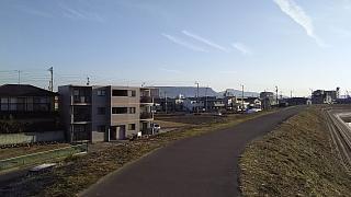 20160211野田池(その1)
