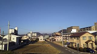 20160211野田池(その4)