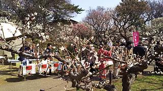 20160228大倉山梅林祭(その9)