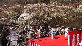 20160228大倉山梅林祭(その59)