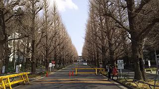 20160228綱街道道散歩(その5)