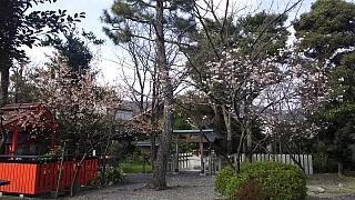 20160318車折神社(その29)