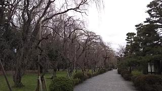 20160318二条城(その25)