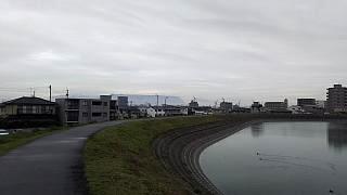 20160319野田池(その1)