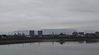 20160319野田池(その4)