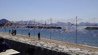 20160321沙弥島(その7)