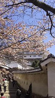 20160322姫路城(その12)