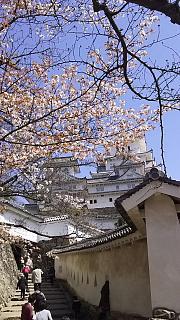 20160322姫路城(その13)