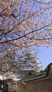 20160322姫路城(その14)