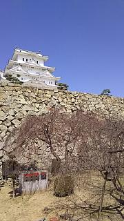 20160322姫路城(その68)