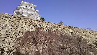 20160322姫路城(その69)