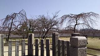 20160322姫路城(その73)
