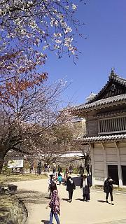 20160322姫路城周囲(その5)
